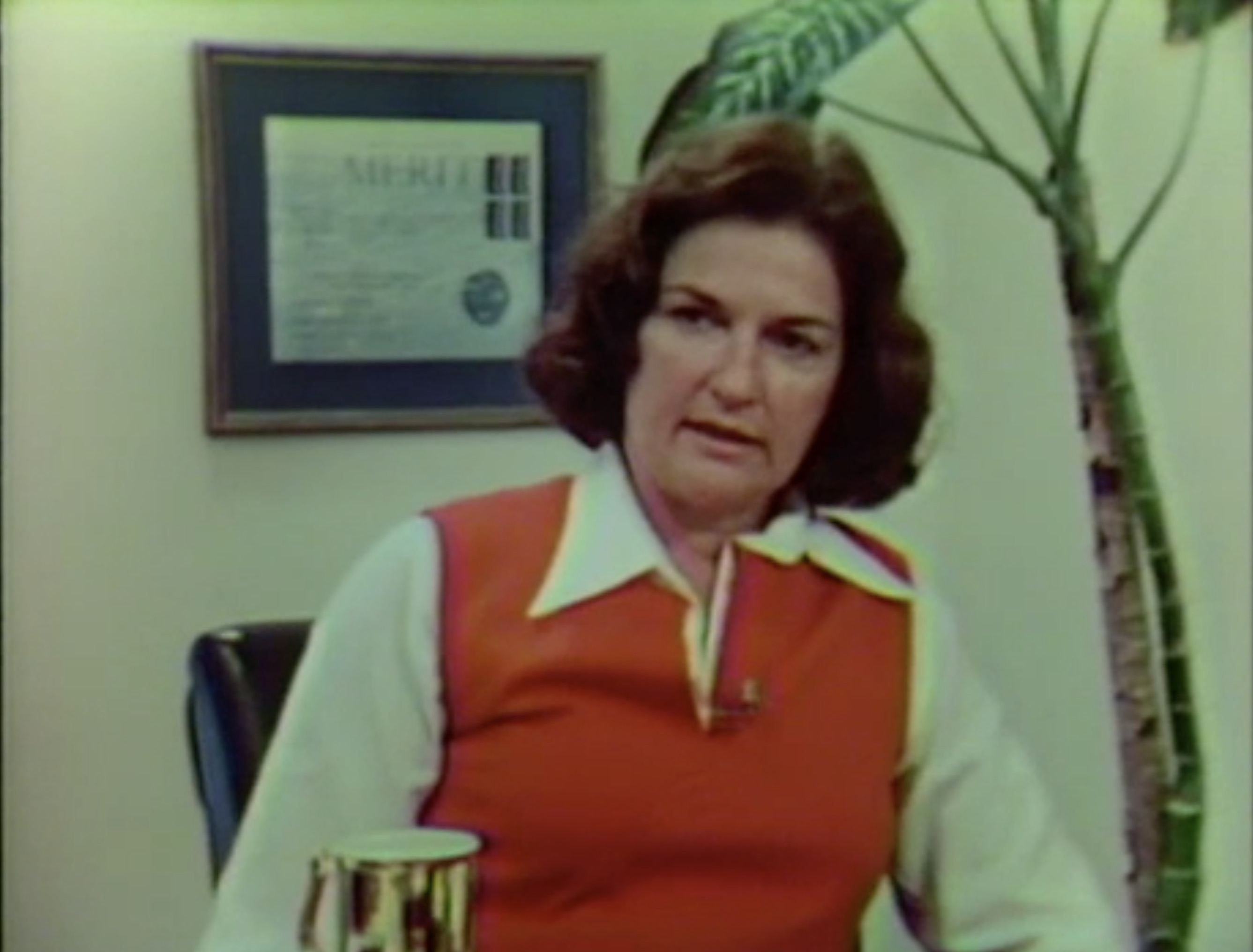 Assignment America; Sissy Farenthold: A Texas Maverick